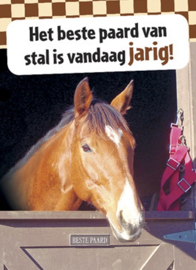 Spreuken paarden